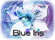 Blue Iris Logo for NVR